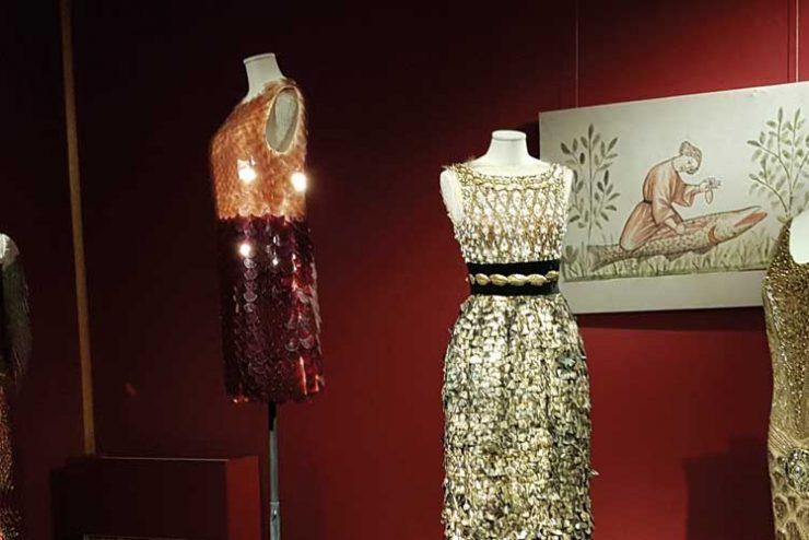 animalia-fashion_big